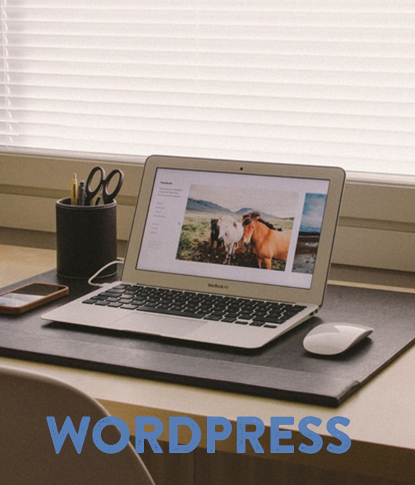 Design Insights: The WordPress Platform- what clients need to know.